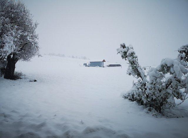 ВоФранции объявлен «оранжевый» уровень опасности из-за сильного снегопада