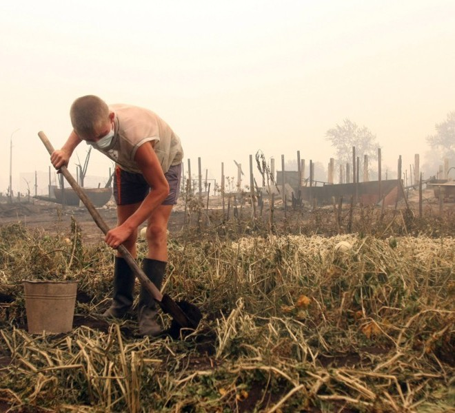 Boys try to save the remains of the harvest in the burnt village of Beloomut, some 130 kilometers from Moscow on July 31, 2010. Hundreds of thousands of firefighters, including army troops, battle forest fires raging across central Russia in the worst heatwave for decades, destroying houses and killing more than 30 people. A total of 238,000 firefighters are battling the flames in 14 regions, along with 226 aircraft, the emergency ministry said, calling the situation under control.  AFP PHOTO/ ANDREY SMIRNOV