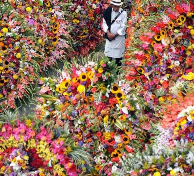 "A farmer stands next to ""silletas"" flower arrangements on August 8, 2010, during the traditional ""Silleteros"" Parade of the Flower Fair in Medellin , Antioquia deparment, Colombia.  AFP PHOTO/Raul ARBOLEDA"