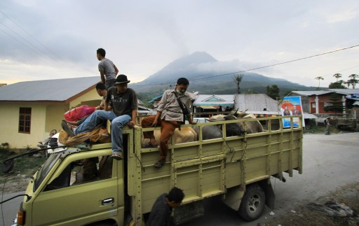 This photograph taken on August 29, 2010 shows residents evacuated on trucks carrying farm animals in Tanah Karo in North Sumatra province as Mount Sinabung spews smoke in the background. The volcano erupted for the first time in 400 years on August 29, spewing a vast cloud of smoke and ash into the air and sending thousands of people fleeing from their homes. Indonesia issued a red alert although no casualties have yet been reported according to officials. AFP PHOTO / SUTANTA ADITYA
