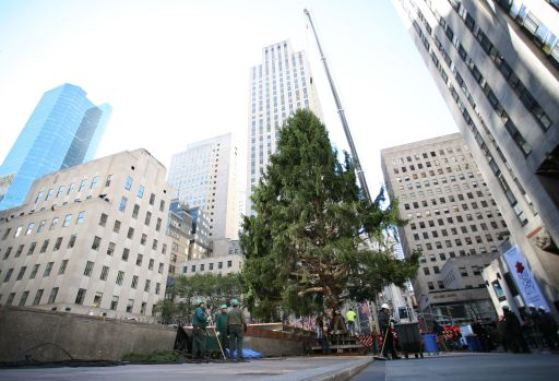 A crane lifts the Rockefeller Center Christmas tree into the place on November 12, 2010 in New York. AFP PHOTO Kimihiro Hoshino