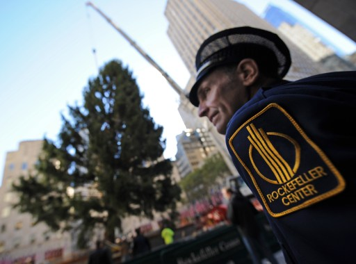 A security guard watches the 74 foot (22.5 meter) Norway spruce that will become the Rockefeller Center Christmas tree as it is lifted into place by a crane November 12, 2010 in New York. AFP PHOTO/Stan Honda