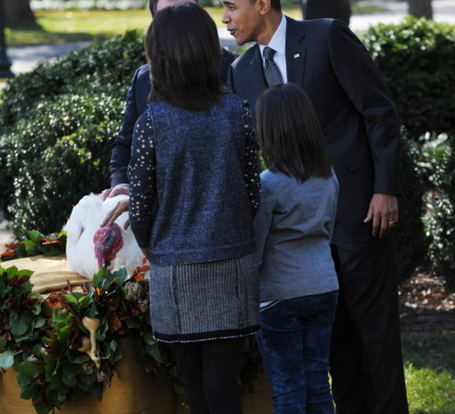 US President Barack Obama pets the National Thanksgiving Turkey ?Apple? as his daughter Malia (L) and Sasha look on during the annual pardon of the Thanksgiving Turkey November 24, 2010 in the Rose Garden of the White House in Washington, DC. AFP PHOTO/Mandel NGAN