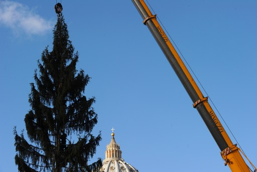 A worker prepares the Christmas tree in Saint Peter's square at the Vatican on December 3, 2010. The 94-year-old tree donated from the village of Luson in the italian Alto Adige region is approximately 34 meters high.  AFP PHOTO / ALBERTO PIZZOLI