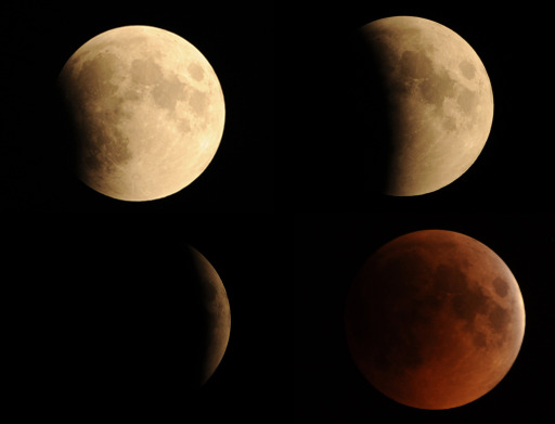 A combination of pictures taken in Islamabad shows the moon in various stages of a total lunar eclipse on June 16, 2011. Astronomers in parts of Europe, Africa, Central Asia and Australia enjoy a total lunar eclipse today, the first of 2011 and the longest in nearly 11 years. A total lunar eclipse occurs when Earth casts its shadow over the Moon. The lunar face can sometimes turn reddish, coppery-brown or orange, tinged by light from the Sun that refracts as it passes through our atmosphere.   AFP PHOTO/ AAMIR QURESHI