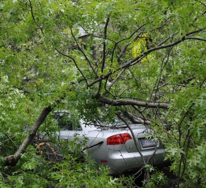 A car is seen under an uprooted tree on Upton Street August 28, 2011 after Hurricane Irene swept through the area. Hundreds of thousands in the Capital region have been left without power in the wake of Hurricane Irene. AFP PHOTO/Mandel NGAN