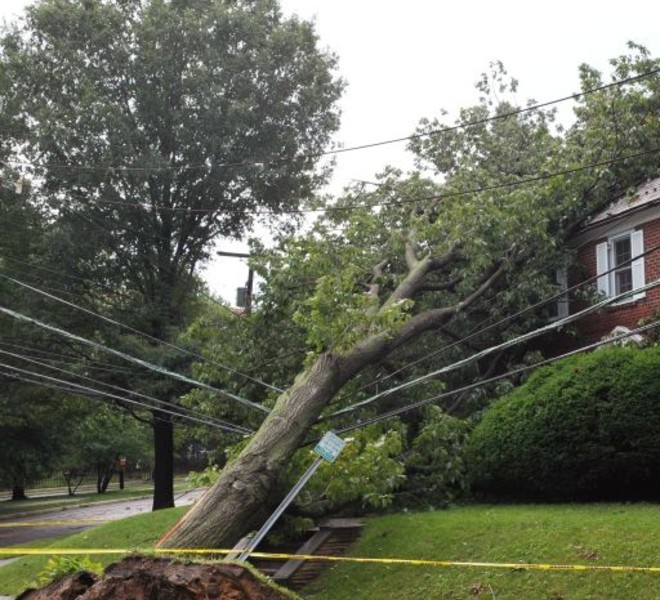 An uprooted tree resting precariously on powerlines is seen at the intersection of Reno Rd and Warren St. August 28, 2011 after Hurricane Irene swept through the area. Hundreds of thousands in the Capital region have been left without power in the wake of Hurricane Irene. AFP PHOTO/Mandel NGAN