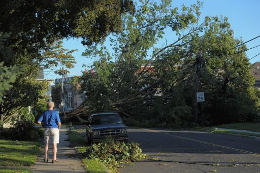 MANASQUAN, NJ - AUGUST 28: A passerby observes a tree brought down by winds caused by Hurricane Irene on August 28, 2011 in Manasquan, New Jersey. While Hurricane Irene has now been downgraded to a tropical storm, it has knocked out power to more than 4.5 million people and is attributed to 19 deaths as it travels up the Eastern seaboard.   Michael Loccisano/Getty Images/AFP== FOR NEWSPAPERS, INTERNET, TELCOS & TELEVISION USE ONLY ==