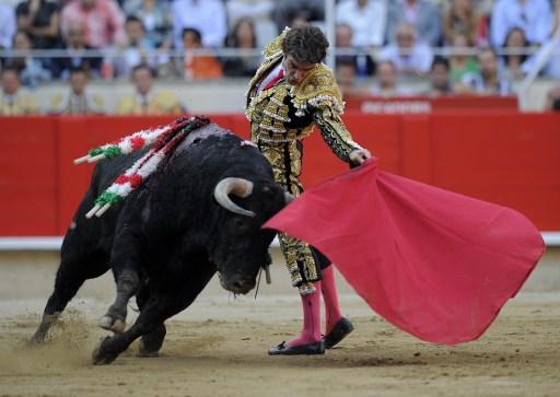 Spanish bullfighter Jose Tomas performs a pass on a bull on September 25, 2011 in Barcelona's Monumental arena for the last time on Sunday before a ban against the centuries-old blood sport comes into effect in Spain's northeastern Catalonia region. AFP PHOTO/ LLUIS GENE.