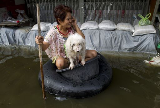 A woman talks on her phone as she sits in a tub with her dog kept afloat by a tyre tube in Bangkok on November 8, 2011. Thailand's prime minister said she would miss an Asia-Pacific summit in Hawaii this weekend, postponing her debut on the world stage to deal with the kingdom's worst floods in half a century. AFP PHOTO/ Nicolas ASFOURI
