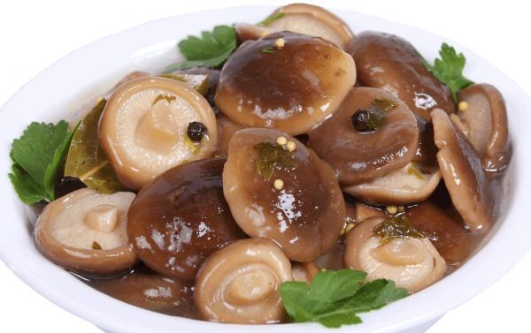 Картинки по запросу маринованые грибы