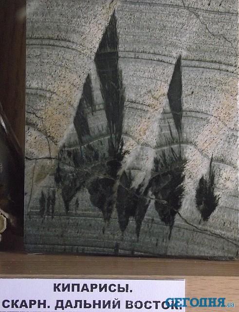 Александр Кулиш. Музей искусства природы. Волшебный Партенит.