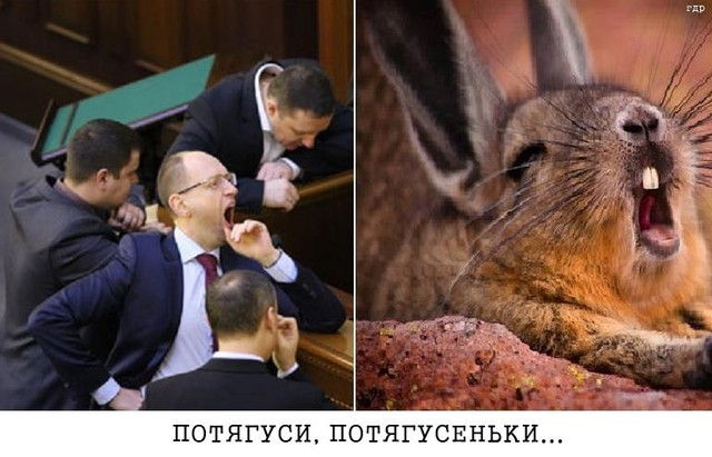 """Бурбак о заявлении Саакашвили по отставке Абромавичуса: """"Он председатель Одесской ОГА, идите работайте"""" - Цензор.НЕТ 2947"""