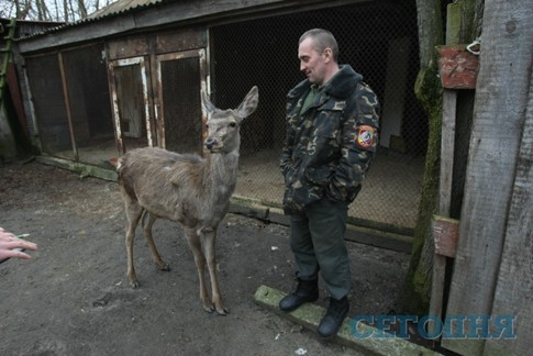 украина новости сейчас