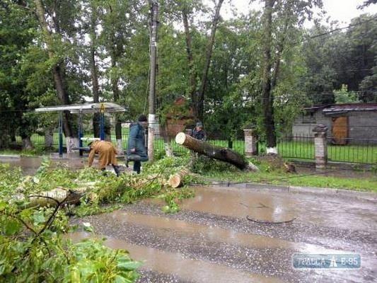 Два автомобиля повреждены упавшими деревьями наАрмейской иАртиллерийской вОдессе