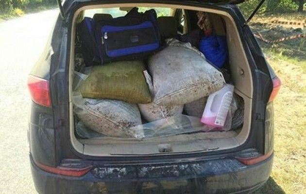 ВРовенской области милиция  изъяла янтаря на1,5 млн грн