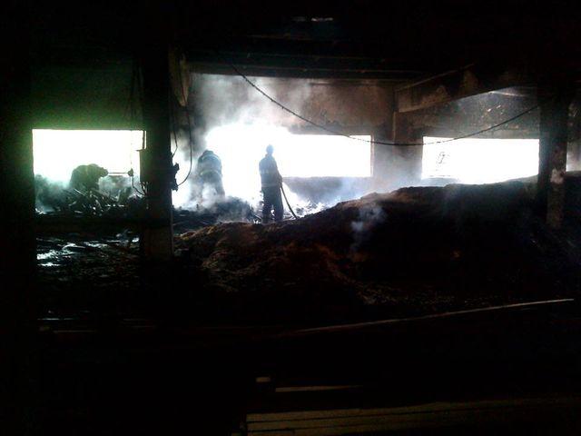 Ликвидирован пожар вдеревообрабатывающем цехе