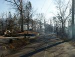 Лесные пожары выжгли штат Тенесси (фото)