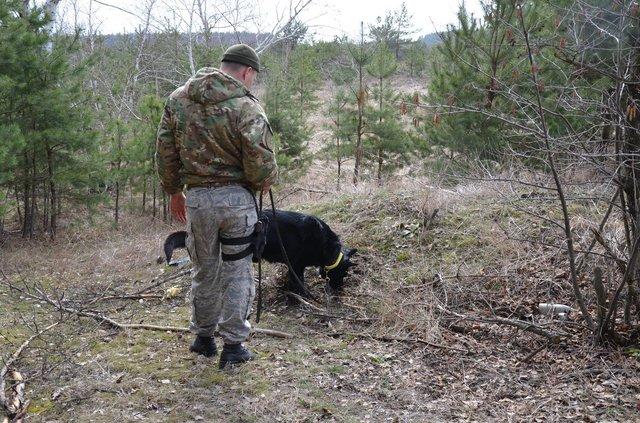 СБУ отыскала  тайник сгранатометами итротилом вЗапорожской области