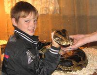 Куликов Тимофей, 11 лет
