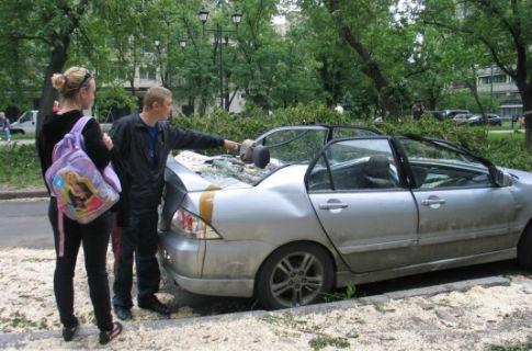 В Киеве дерево расплющило иномарку (ФОТО)