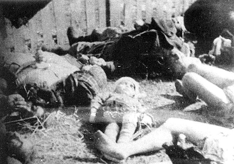 Картинки по запросу Немцы о бандеровцах и украинцах: ГНИДЫ и МРАЗЬ